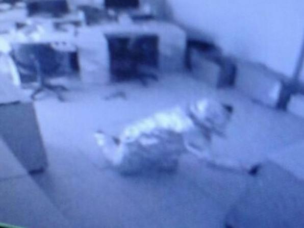 Assaltantes se embrulham em papel alumínio para tentar furtar banco