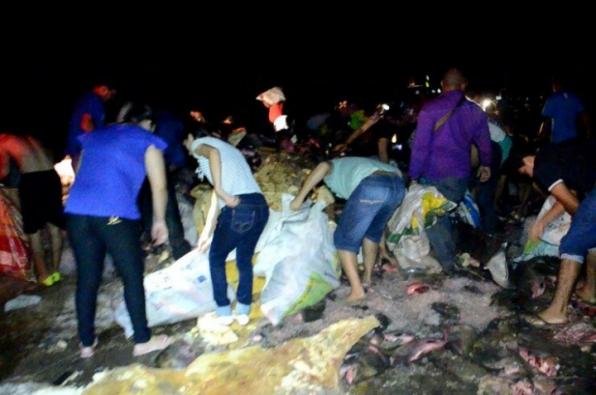 Carreta derrama 30 toneladas de peixe na pista e populares saqueiam quase metade da carga