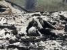 Homem é brutalmente queimado vivo na zona rural de Cujubim, em RO