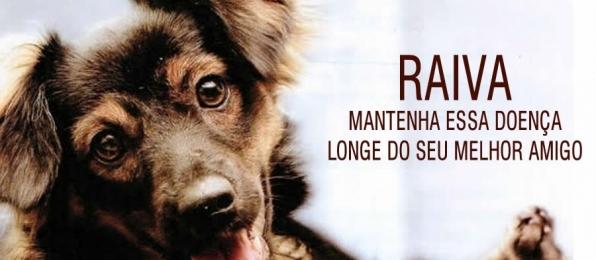 Monte Negro: Vacinação antirrábica para cães e gatos acontece no sábado, 27 de outubro