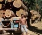 Motorista de Monte Negro morre em acidente com caminhão de tora ao cai de ponte em Vista Alegre, RO
