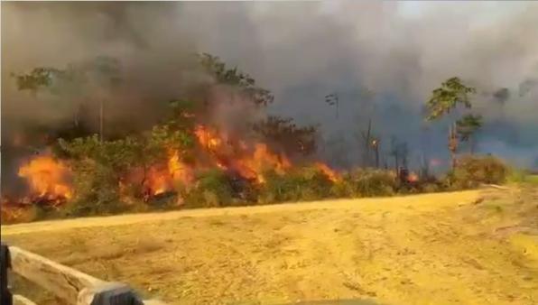 Casal morre carbonizado em queimada de pasto na região de assentamento, em RO