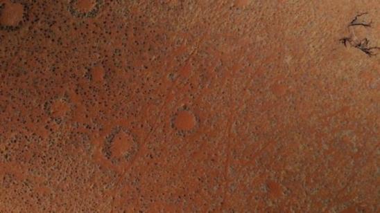 Os anéis de fadas e outros mistérios do deserto mais antigo do mundo