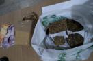 Força Tática faz apreensão de drogas com casal na Vila do Sossego de Ariquemes, em RO