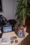 ARIQUEMES: Policiais militares prendem dupla por tráfico de drogas